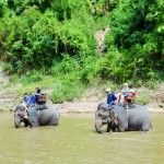 Shangri-Lao elephant riding 5