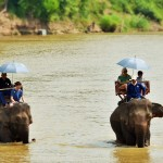 Shangri-Lao elephant riding 2