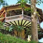 Shangri-Lao tree house